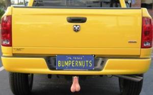 bumper-nuts